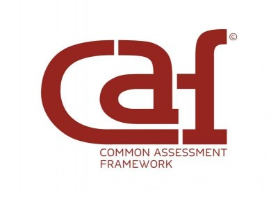 caf common assessment framework 53 281